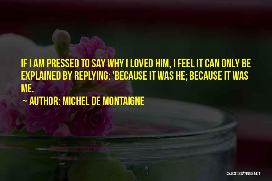 Why Are You Not Replying Quotes By Michel De Montaigne