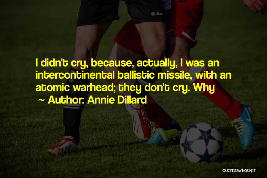 Why Cry Quotes By Annie Dillard