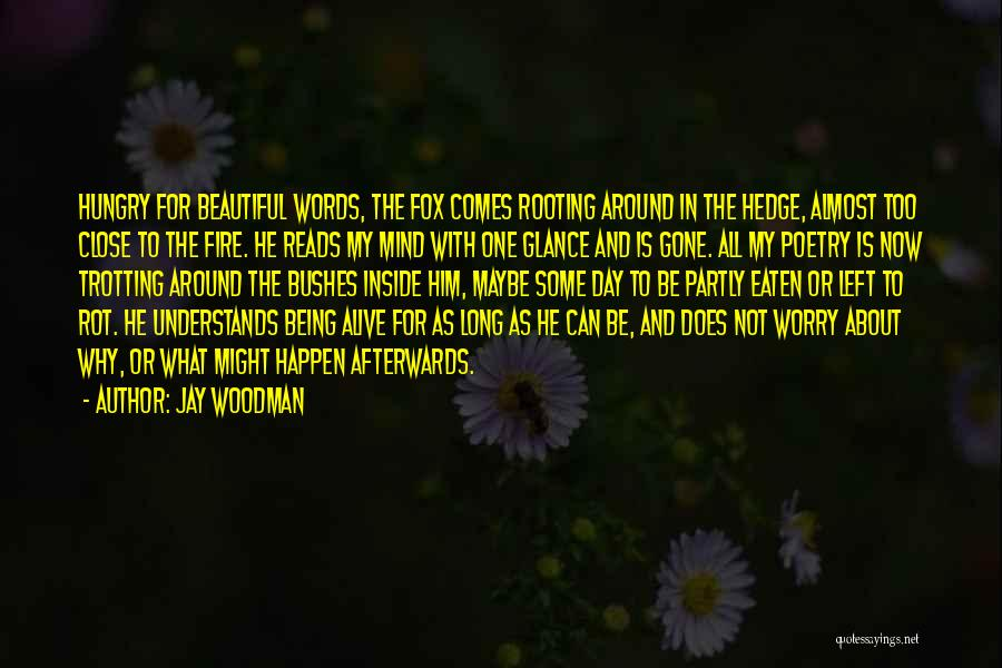 Why Not To Worry Quotes By Jay Woodman