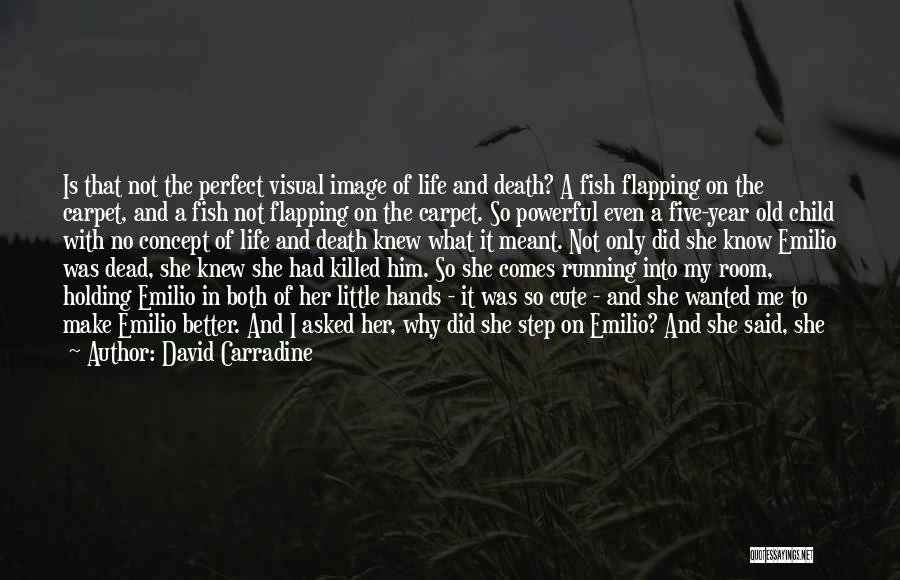 Why She Is Perfect Quotes By David Carradine
