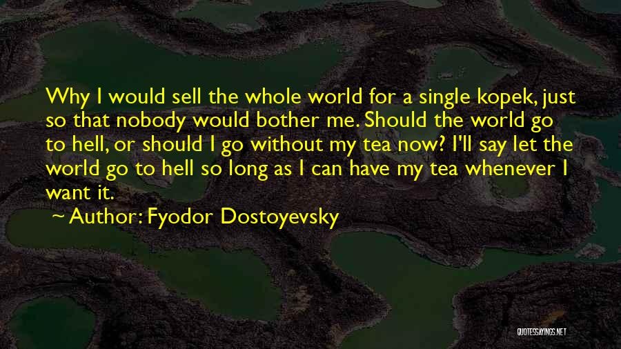 Why Should I Bother Quotes By Fyodor Dostoyevsky