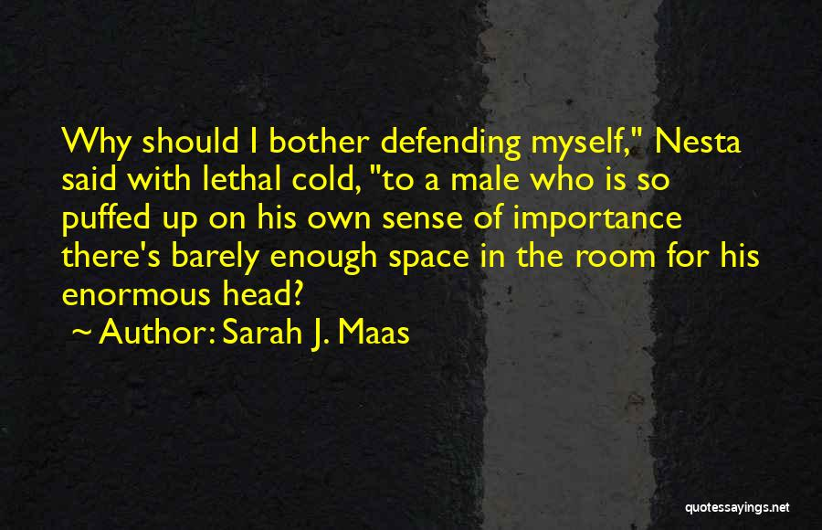 Why Should I Bother Quotes By Sarah J. Maas