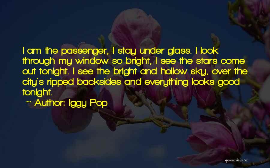 Why Should I Stay With You Quotes By Iggy Pop