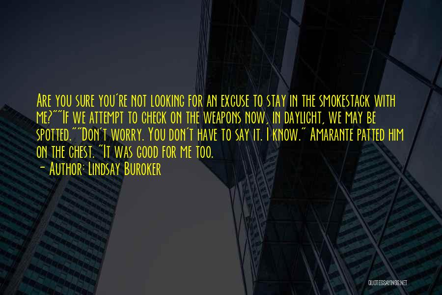 Why Should I Stay With You Quotes By Lindsay Buroker