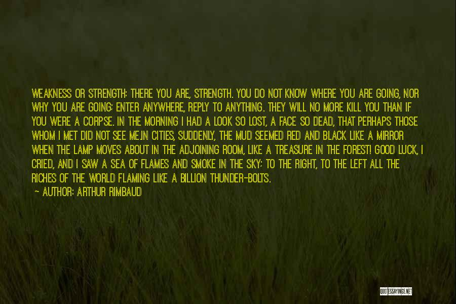 Why You Left Me Quotes By Arthur Rimbaud