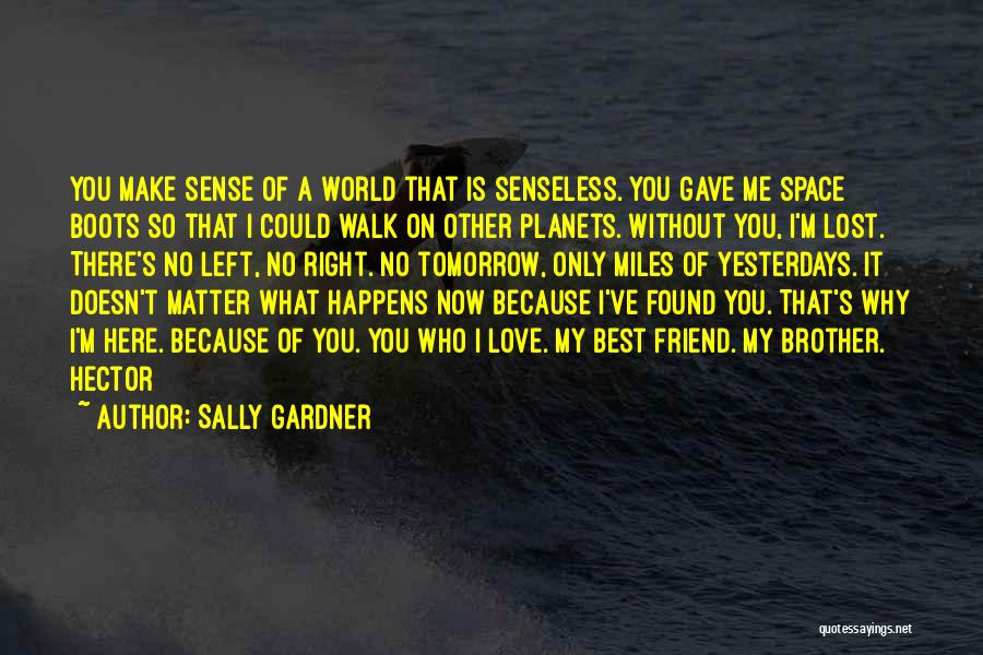 Why You Left Me Quotes By Sally Gardner