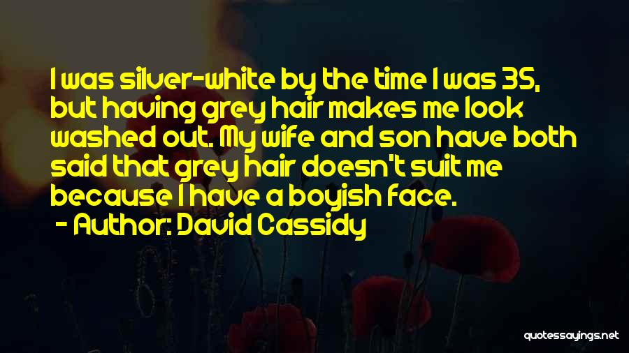 Wife And Son Quotes By David Cassidy