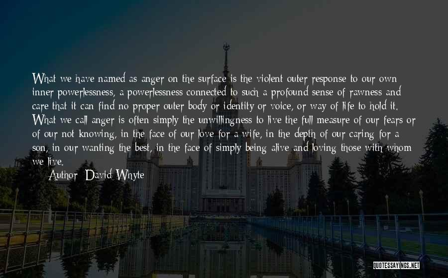 Wife And Son Quotes By David Whyte