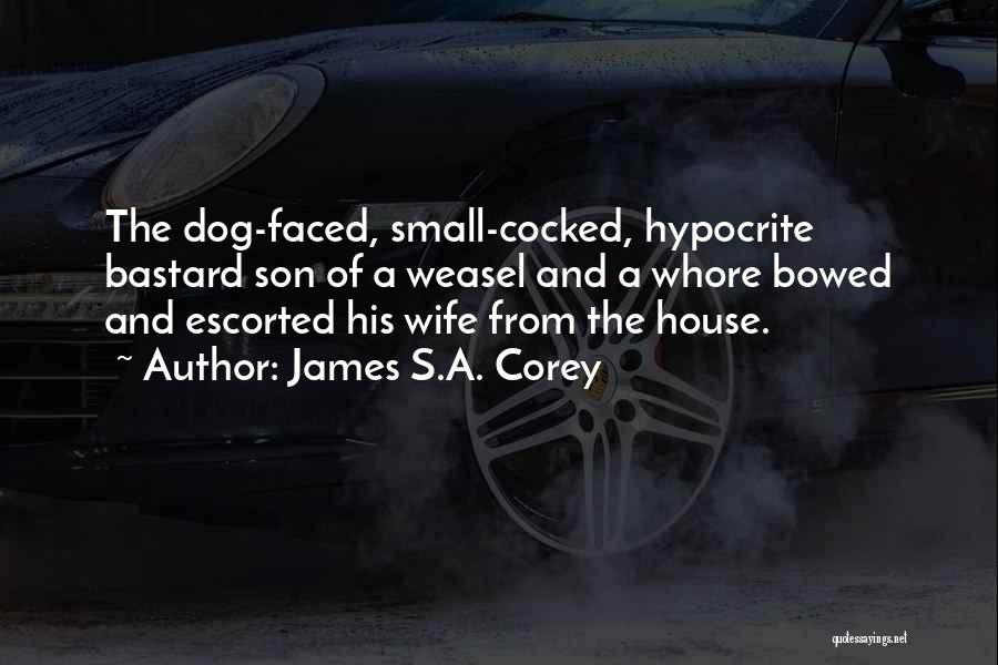 Wife And Son Quotes By James S.A. Corey