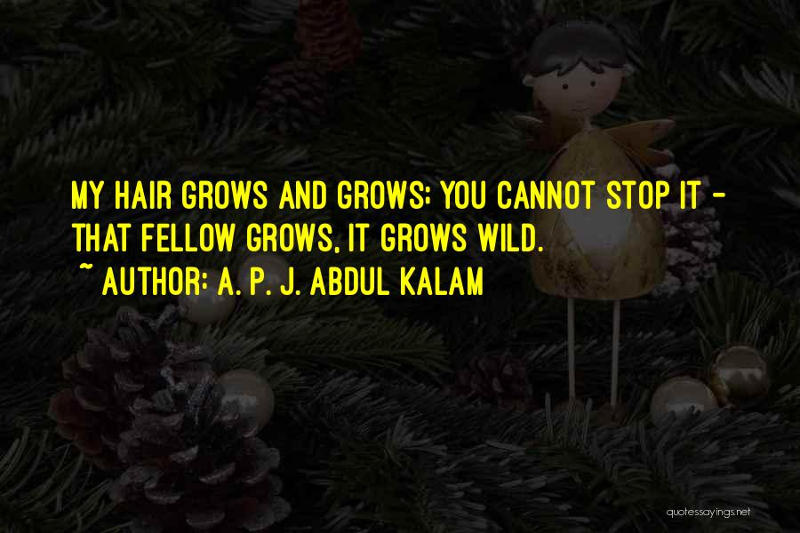Wild Hair Quotes By A. P. J. Abdul Kalam