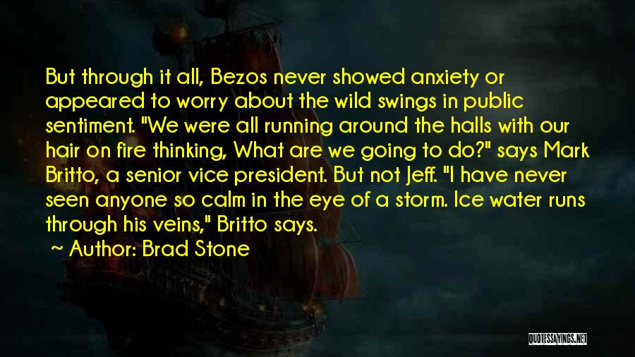 Wild Hair Quotes By Brad Stone