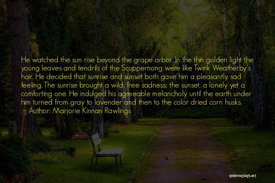 Wild Hair Quotes By Marjorie Kinnan Rawlings