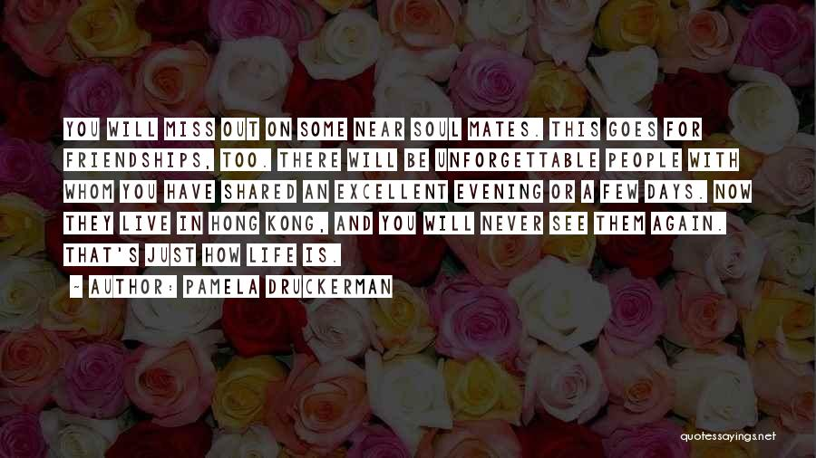 Will Be Missing You Quotes By Pamela Druckerman
