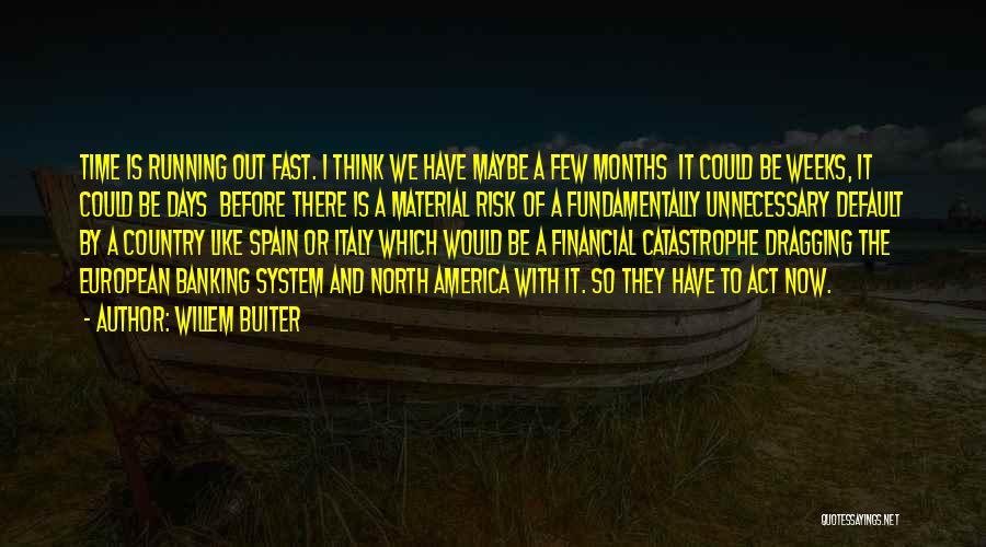 Willem Buiter Quotes 706907