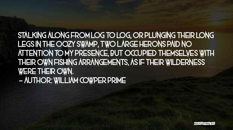 William Cowper Prime Quotes 1888453