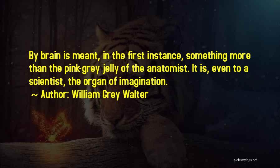 William Grey Walter Quotes 787201