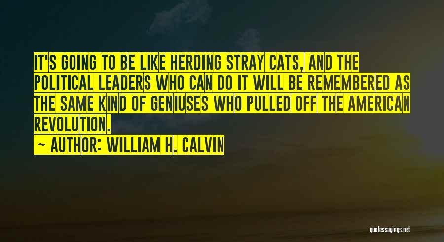 William H. Calvin Quotes 1876797
