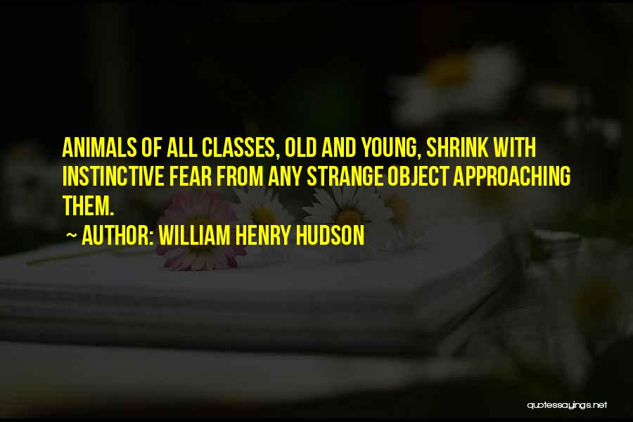 William Henry Hudson Quotes 1037456