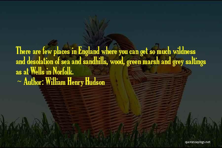 William Henry Hudson Quotes 1181466