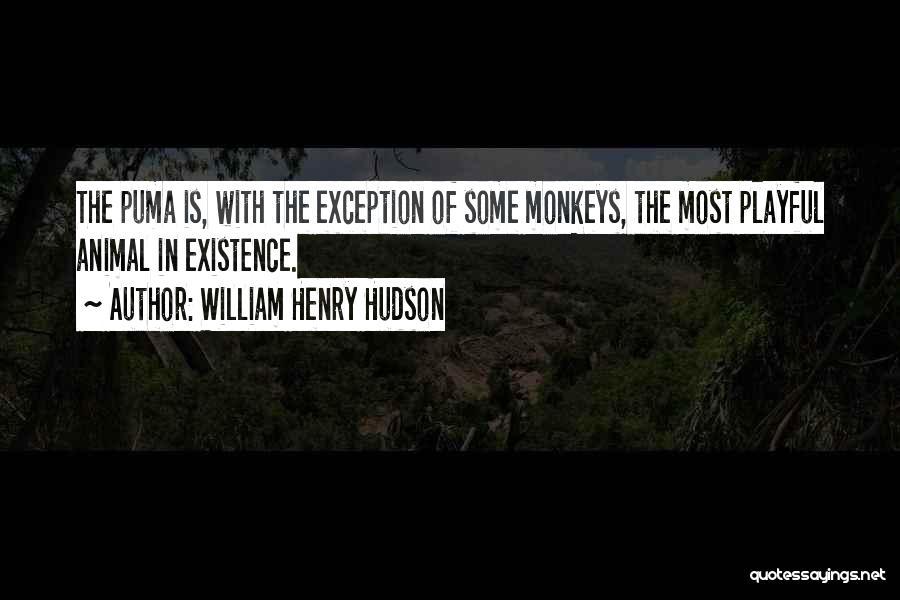 William Henry Hudson Quotes 156459