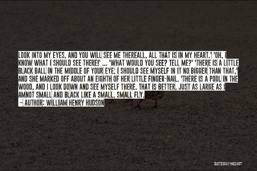 William Henry Hudson Quotes 580909