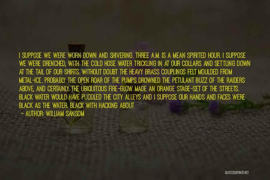 William Sansom Quotes 708433