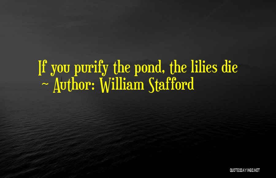 William Stafford Quotes 1466714