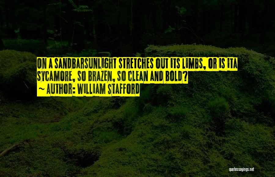 William Stafford Quotes 671348