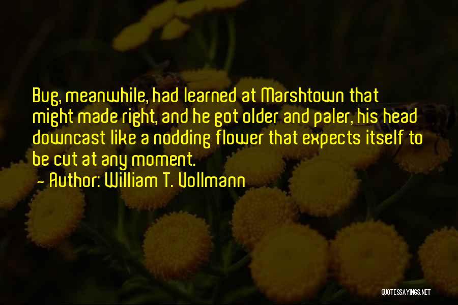 William T. Vollmann Quotes 1719587