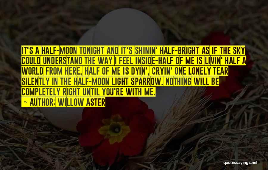 Willow Aster Quotes 1368817