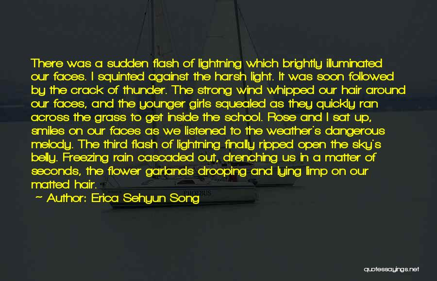 Wind And Friends Quotes By Erica Sehyun Song