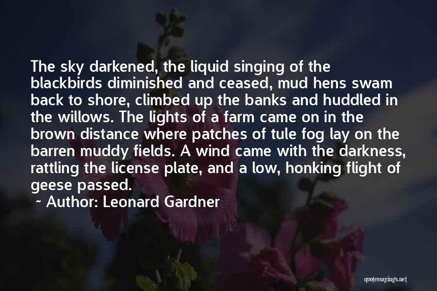 Wind In Willows Quotes By Leonard Gardner