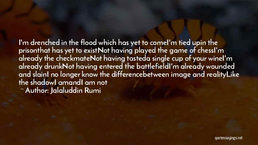 Wine Drunk Quotes By Jalaluddin Rumi