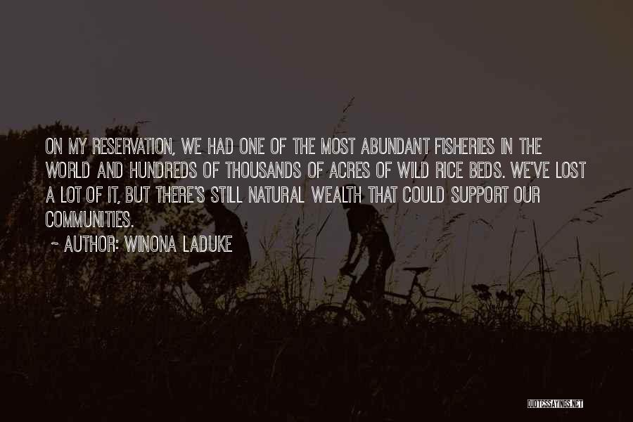 Winona LaDuke Quotes 178006