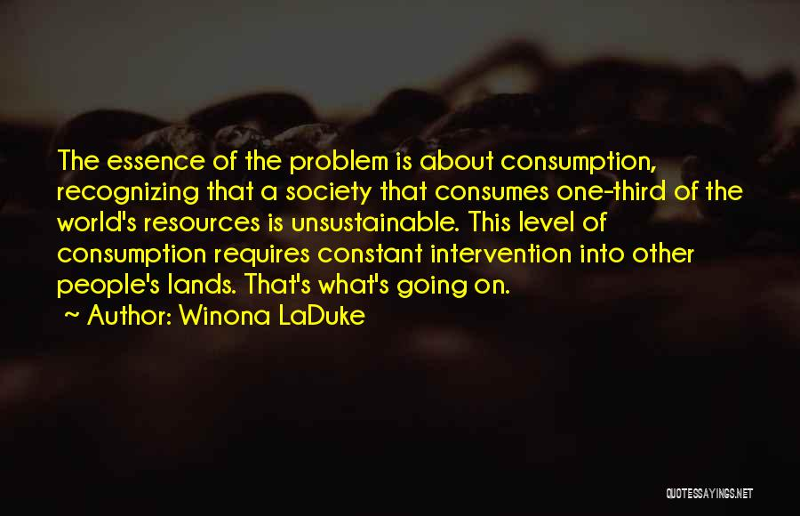 Winona LaDuke Quotes 1936333