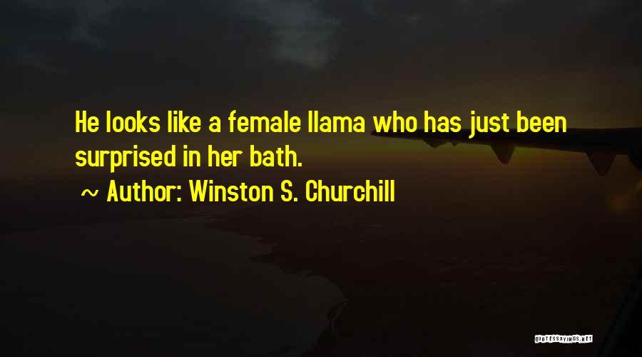 Winston S. Churchill Quotes 1539072