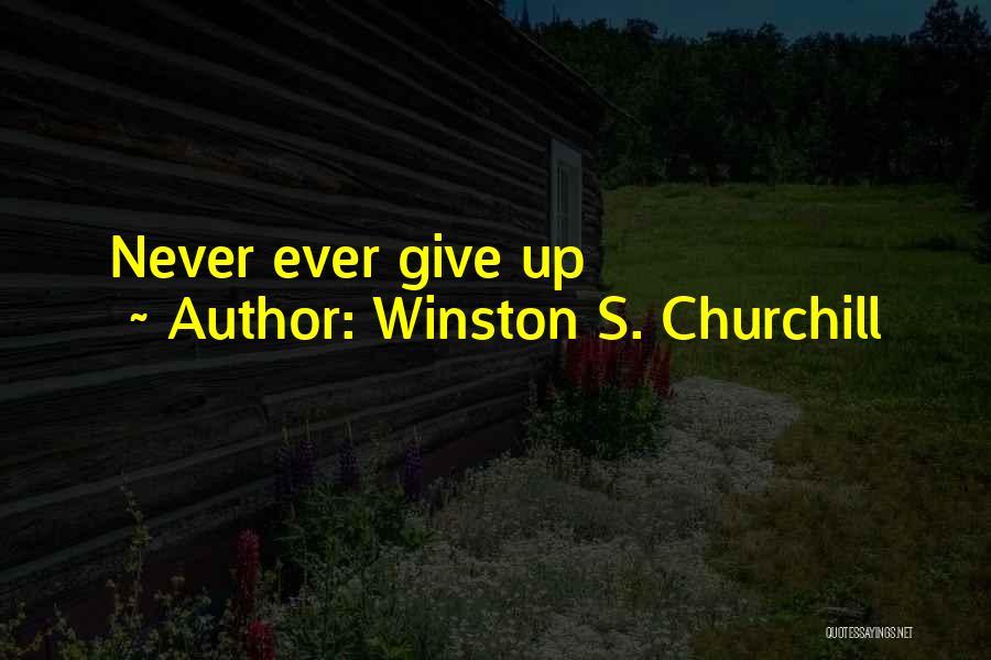 Winston S. Churchill Quotes 743832