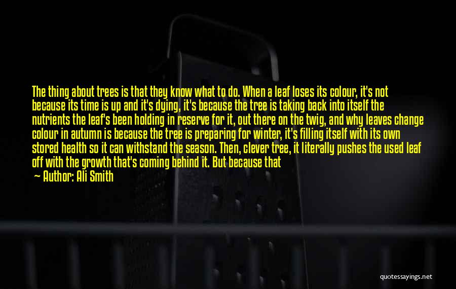Winter And Change Quotes By Ali Smith