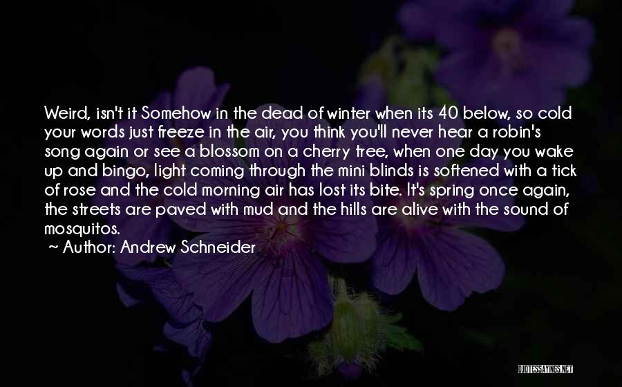 Winter Rose Quotes By Andrew Schneider