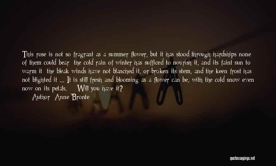 Winter Rose Quotes By Anne Bronte