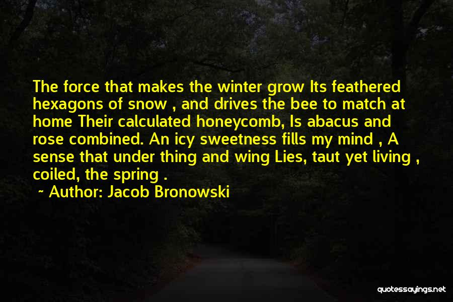 Winter Rose Quotes By Jacob Bronowski