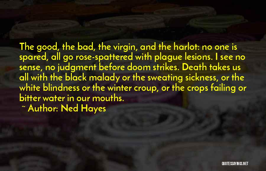 Winter Rose Quotes By Ned Hayes