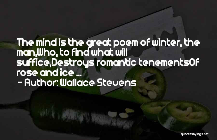 Winter Rose Quotes By Wallace Stevens