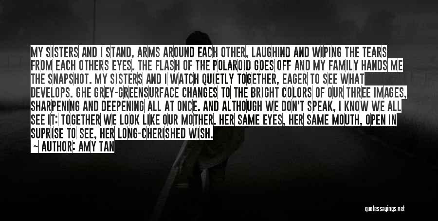Wiping Tears Quotes By Amy Tan