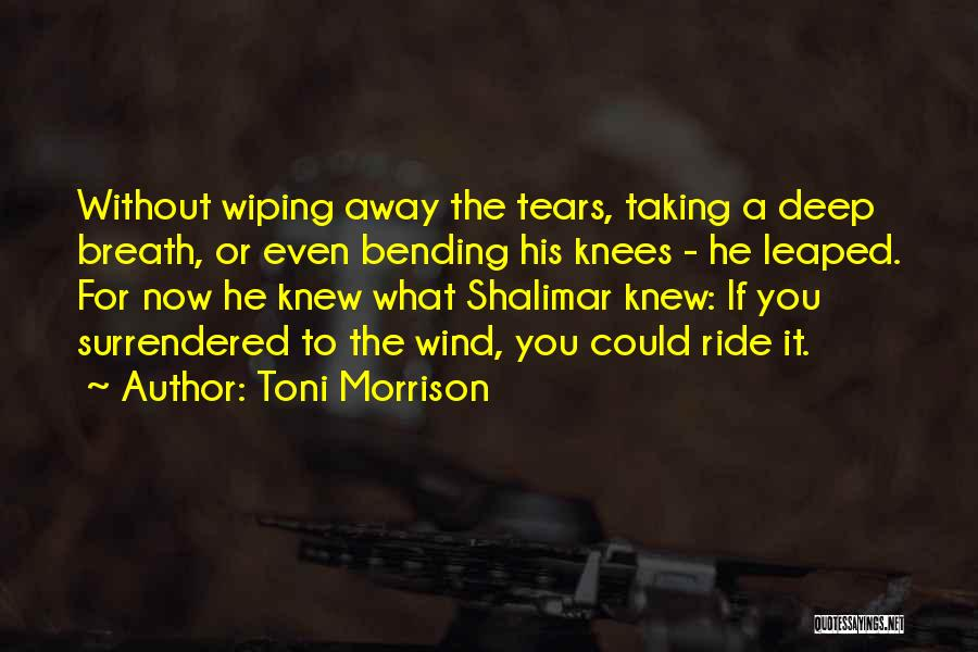 Wiping Tears Quotes By Toni Morrison