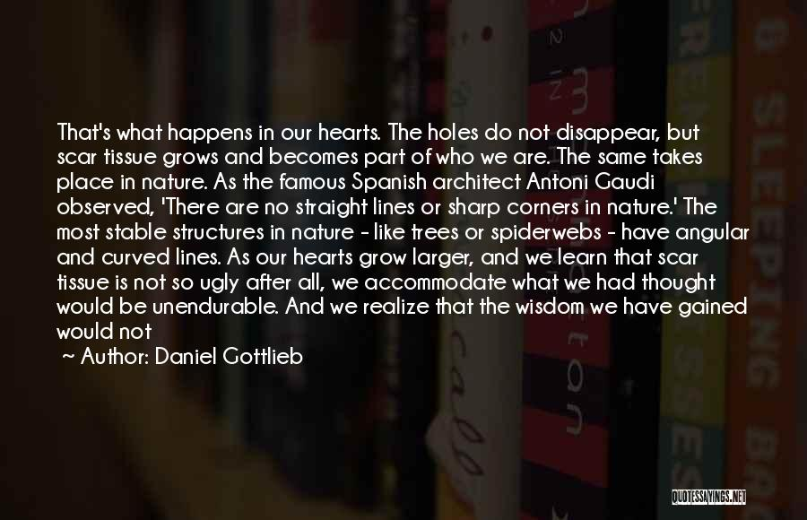 Wisdom And Trees Quotes By Daniel Gottlieb
