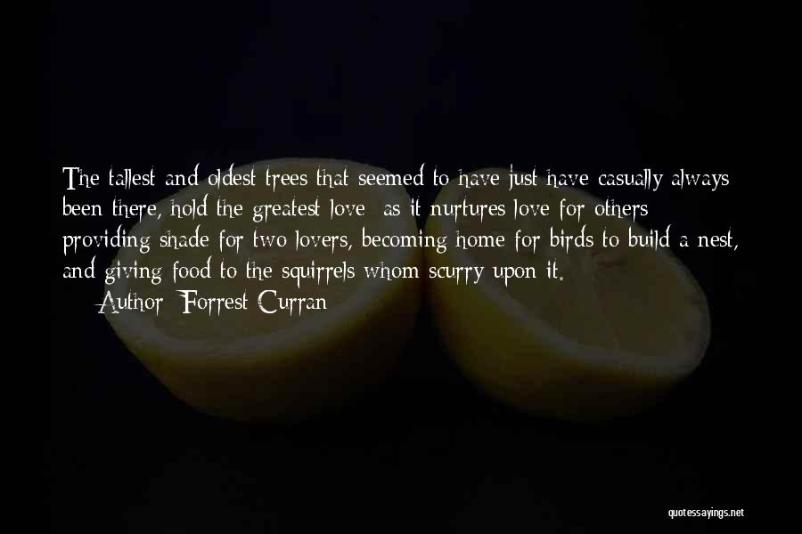 Wisdom And Trees Quotes By Forrest Curran