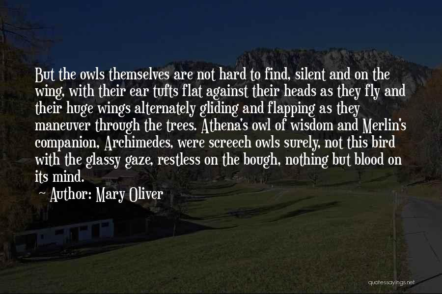 Wisdom And Trees Quotes By Mary Oliver