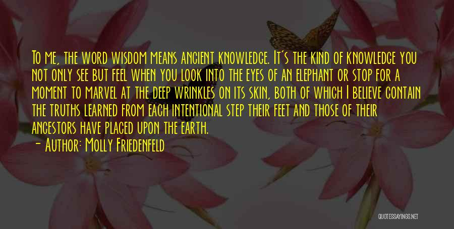 Wisdom Wrinkles Quotes By Molly Friedenfeld