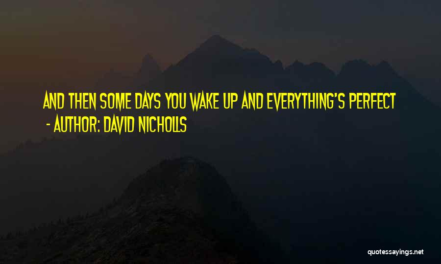 Wish Everything Was Perfect Quotes By David Nicholls